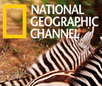 National Geographic Australia and New Zealand enews development